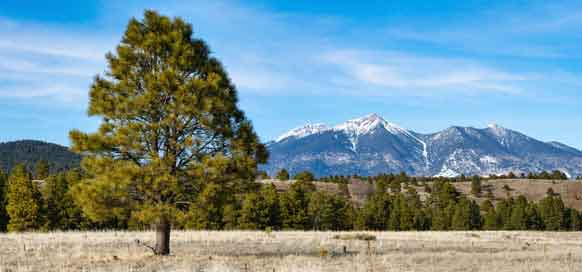Prepare for Flagstaff's Sunny Skies & Cool Temps