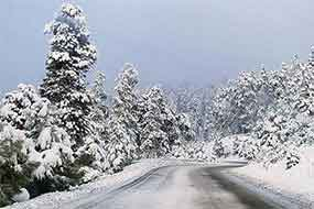 Winter Driving Tips & Conditions
