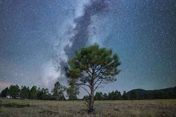5 Best Stargazing Spots in Flagstaff