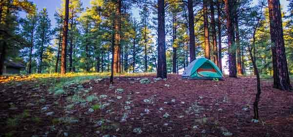 Camping in Flagstaff